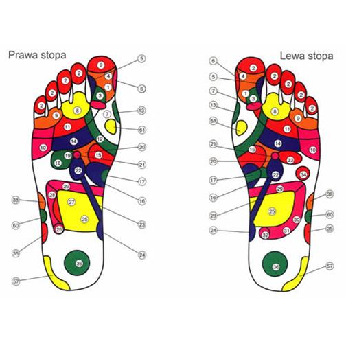 Wkładki Magnetyczne Do Butów Rozmiar 39 42 Cedrovit